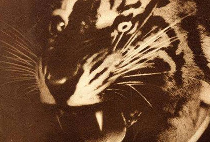 Tête | Dr. Sabine Kriebel »From Cut And Paste To Mechanical Reproduction In Photography – 1920's Dada To The Present«
