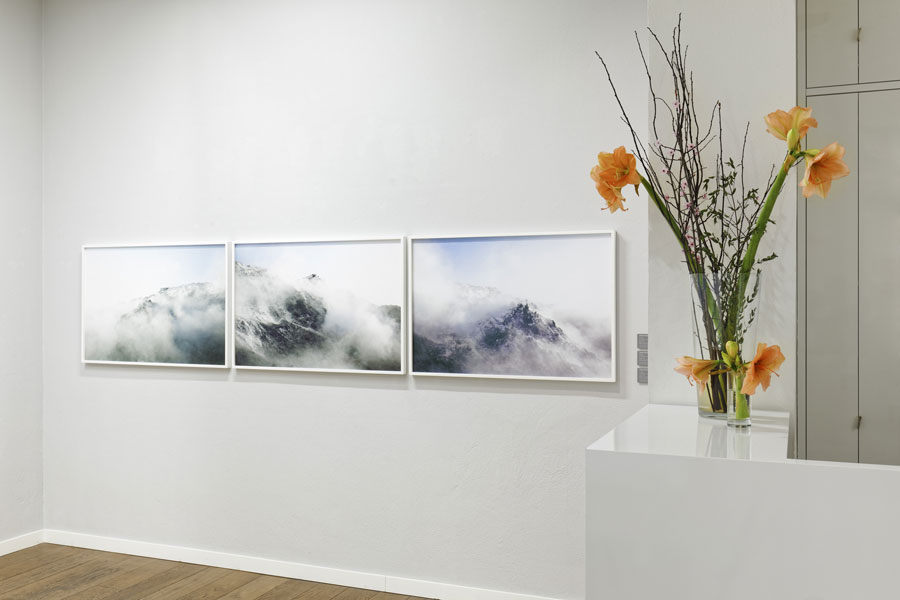 Alfred Ehrhardt Stiftung Berlin  MODELS OF NATURE IN CONTEMPORARY PHOTOGRAPHY, Installation View, 2020, Photo © Carsten Eisfeld